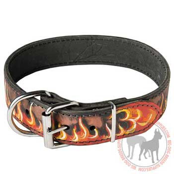 Leather Collar Wide for Large and Medium Dogs