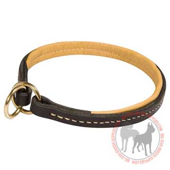 Leather Choke Collar with Nappa Padding