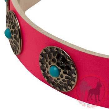 Leather Collar for Female Dogs