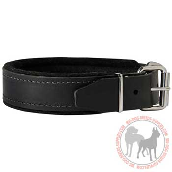 Leather dog collar with easy release buckle