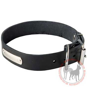 Dog Leather Collar with Identification Tag