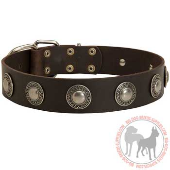 Leather Collar for Dog Training