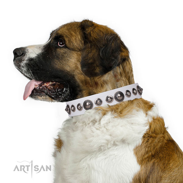 Fashionable embellished leather dog collar for daily use