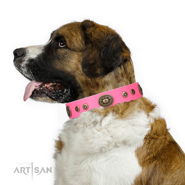 Fashionable studded genuine leather dog collar for fancy walking
