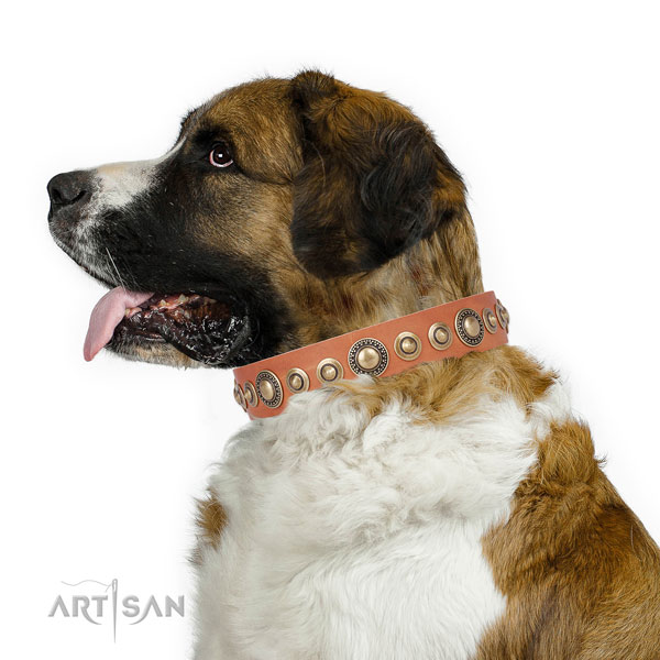 Reliable buckle and D-ring on leather dog collar for walking
