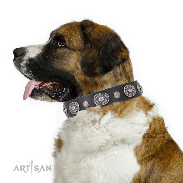 Reliable buckle and D-ring on full grain leather dog collar for walking