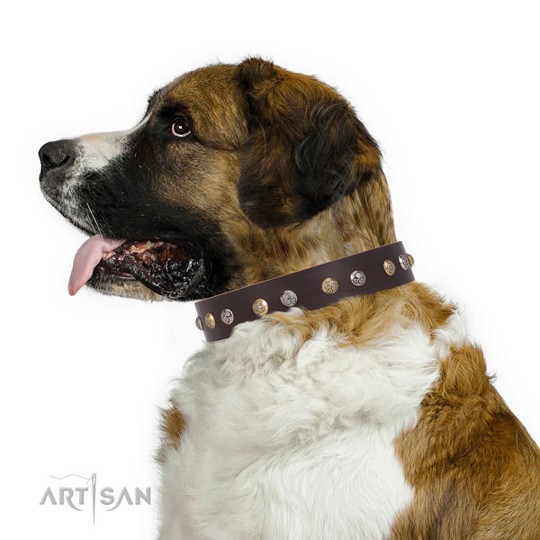 Full grain leather dog collar with corrosion resistant buckle and D-ring for handy use