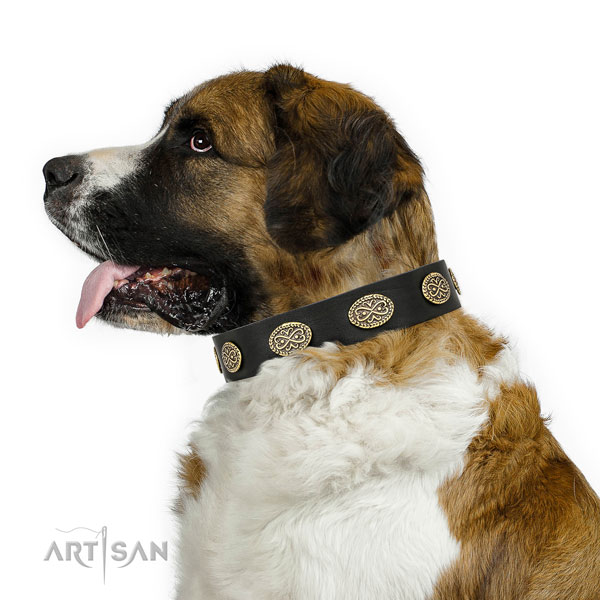 Unusual decorations on everyday use full grain genuine leather dog collar