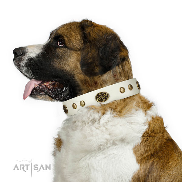 Rust resistant D-ring on full grain leather dog collar for walking