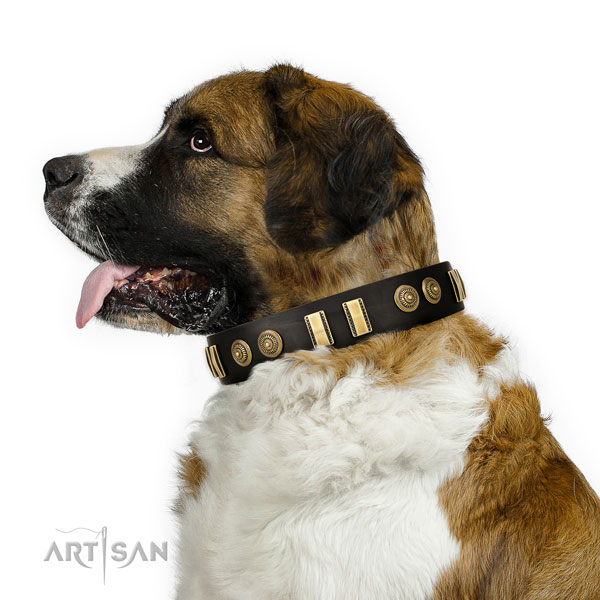 Corrosion resistant D-ring on genuine leather dog collar for daily walking