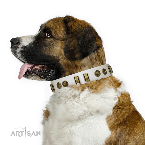 Durable traditional buckle on leather dog collar for everyday use