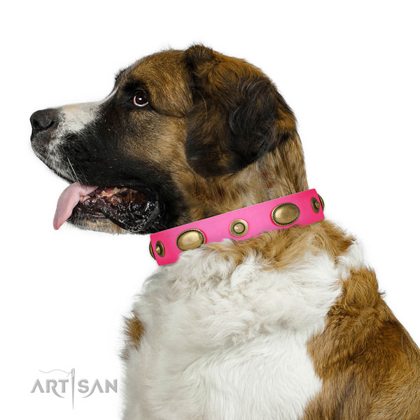 Comfortable wearing dog collar of genuine leather with inimitable adornments