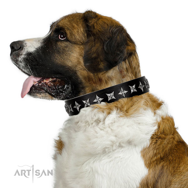 Daily use adorned dog collar of reliable leather