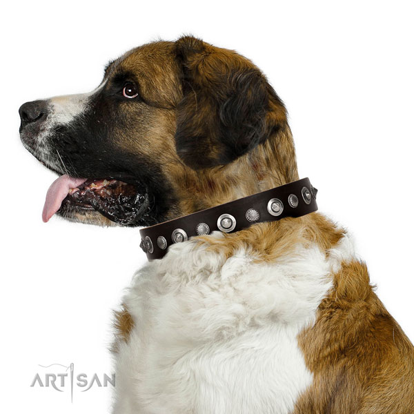 Finest quality natural leather dog collar with stylish design adornments
