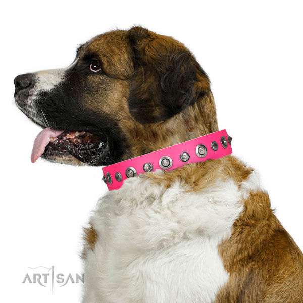 Full grain leather collar with reliable fittings for your handsome doggie