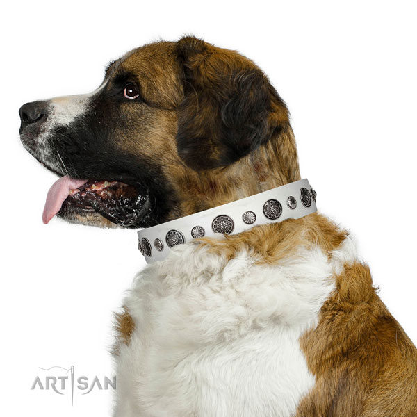Amazing Full grain natural leather dog collar with corrosion proof D-ring