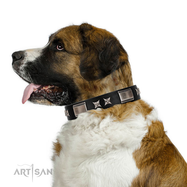 Comfortable wearing quality genuine leather dog collar with adornments