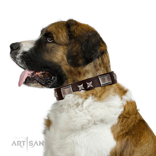Unusual collar of full grain leather for your stylish doggie