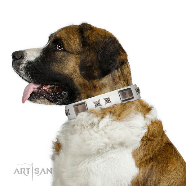 Easy to adjust collar of full grain leather for your handsome doggie