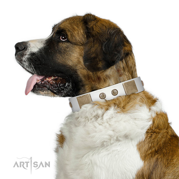 Corrosion resistant hardware on full grain genuine leather dog collar for walking