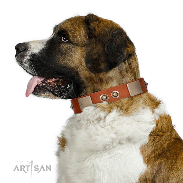Rust resistant hardware on natural genuine leather dog collar for everyday use