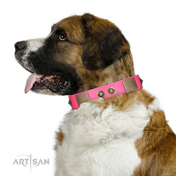 Comfy wearing dog collar of genuine leather with trendy studs