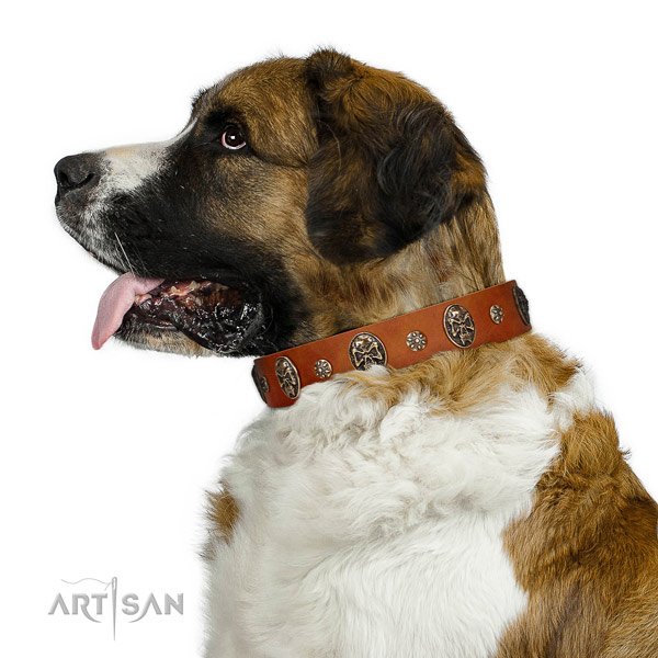Comfortable wearing dog collar of genuine leather with unusual adornments
