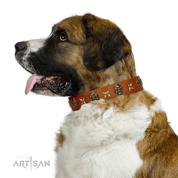 Trendy full grain natural leather dog collar with studs