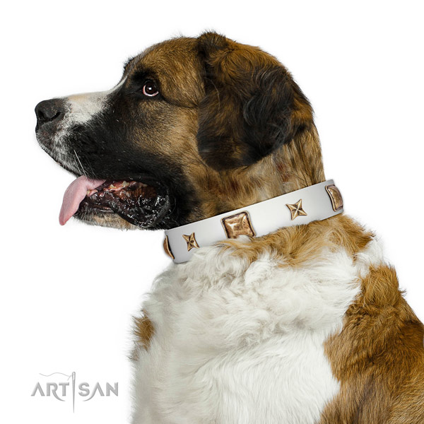Exceptional natural leather dog collar with decorations