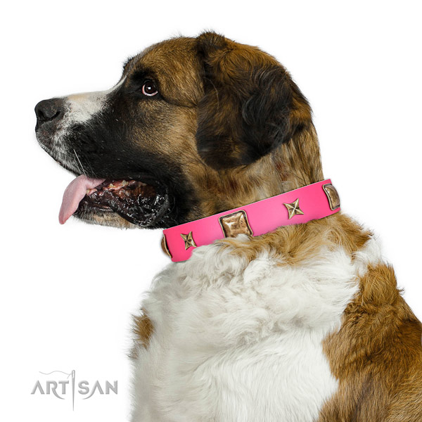 Full grain natural leather dog collar of quality material with fashionable decorations