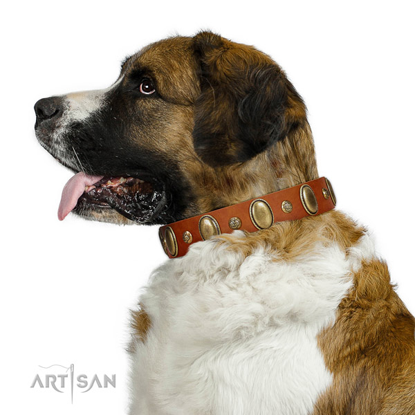 Awesome leather dog collar with strong hardware
