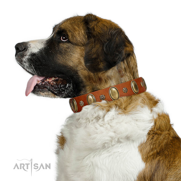 Everyday walking reliable full grain natural leather dog collar with adornments
