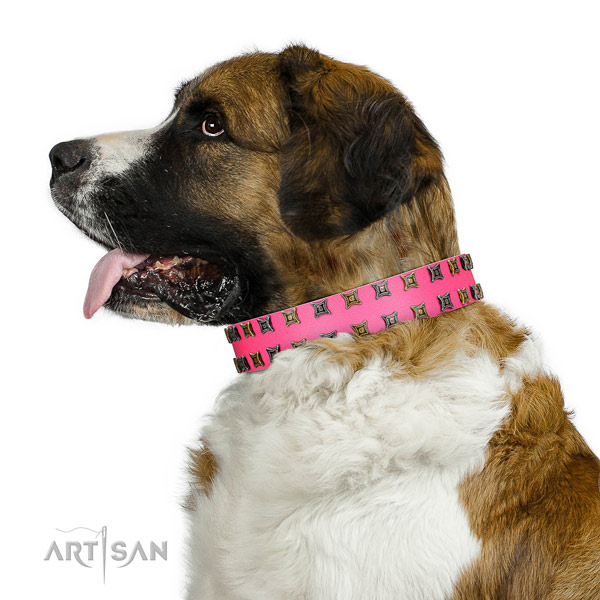 High quality leather dog collar with studs for your doggie