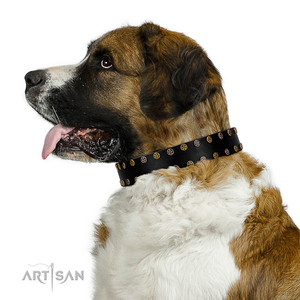 Extraordinary full grain natural leather dog collar with rust-proof adornments