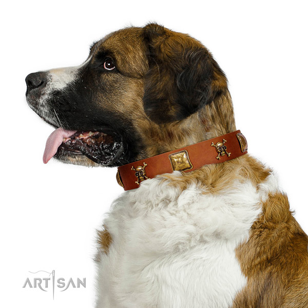 Stylish design genuine leather dog collar with reliable adornments