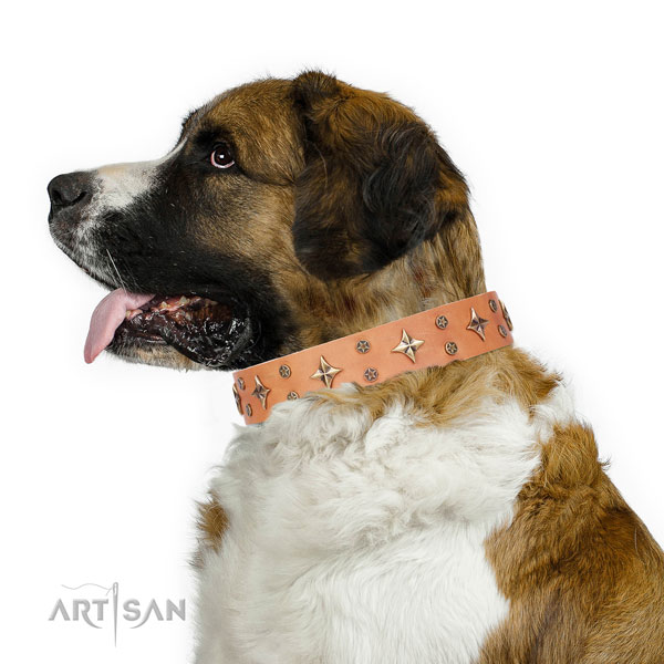 Moscow Watchdog full grain genuine leather collar with rust resistant D-ring for everyday walking