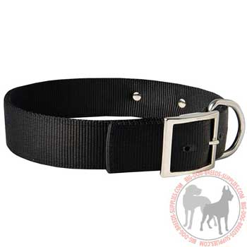 Nylon Pit Bull Collar Equipped with Topntoch Hardware