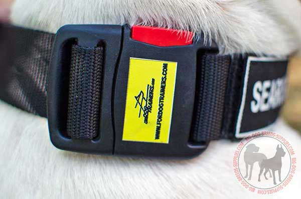 Nylon Collar Quick Release Buckle