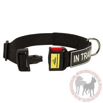 High Quality Nylon Dog Collar