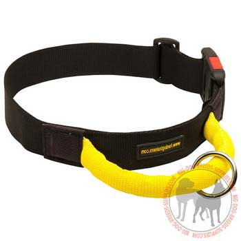American Pit Bull Terrier Collar Nylon for Optimal Control