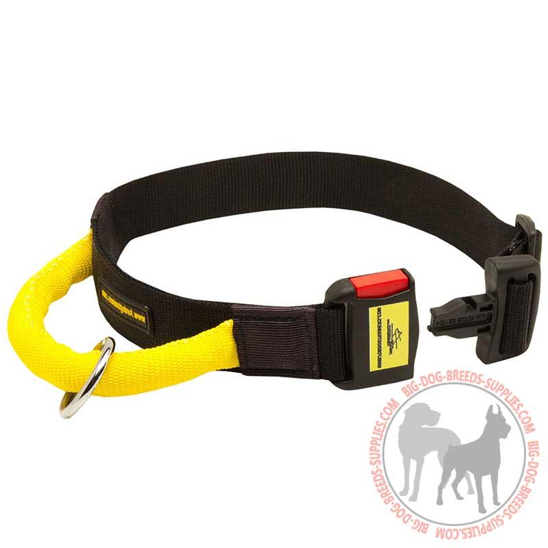 Professional Dog Collars