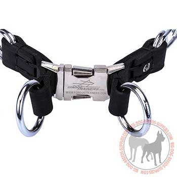 Adjustable Dog Collar with Firm Hardware