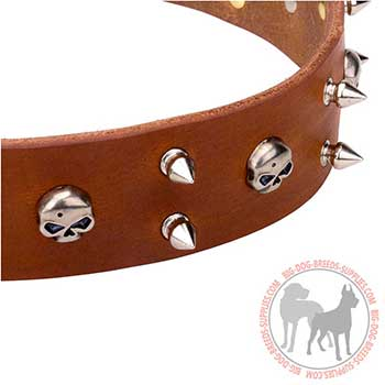 Tan Leather Dog Collar with Trendy Decoration