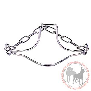 Stainless Dog Collar with Head Support