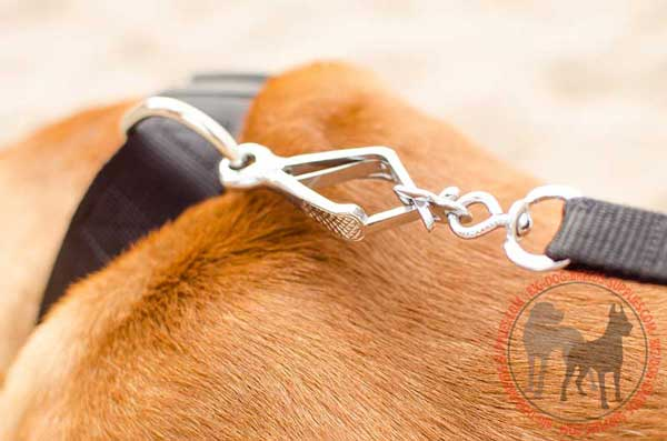 Steel Nickel Plated D-ring for Fast Leash Attachment