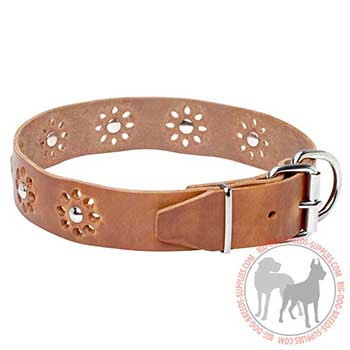 Leather Collar for Canine Stylish Performing