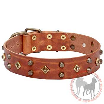 Leather Dog Collar with Buckle