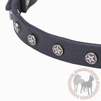 Thin Leather Collar with star studs Decoration