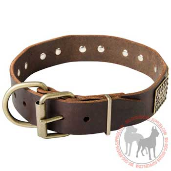 Dog collar leather equipped with dependable clasp