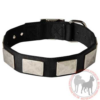 Nylon dog collar with plates